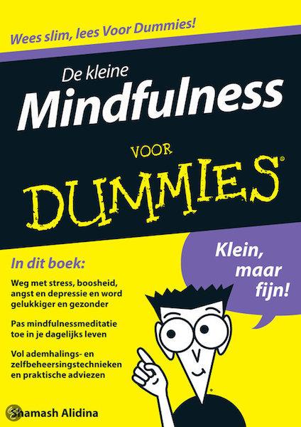 De kleine Mindfulness
