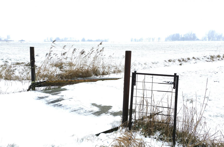 winter wit sneeuw