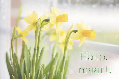 weekend favorieten hallo maart narcissen