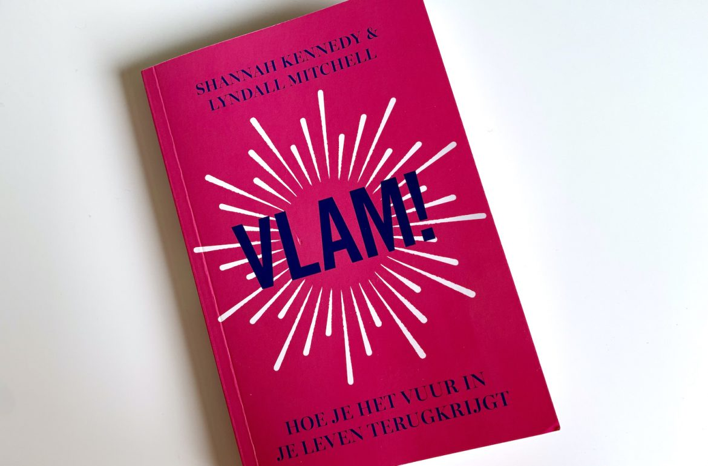 Vlam! boek cover boekbespreking