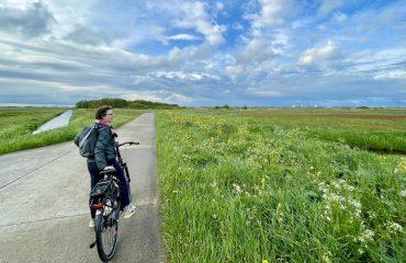 fiets ebike