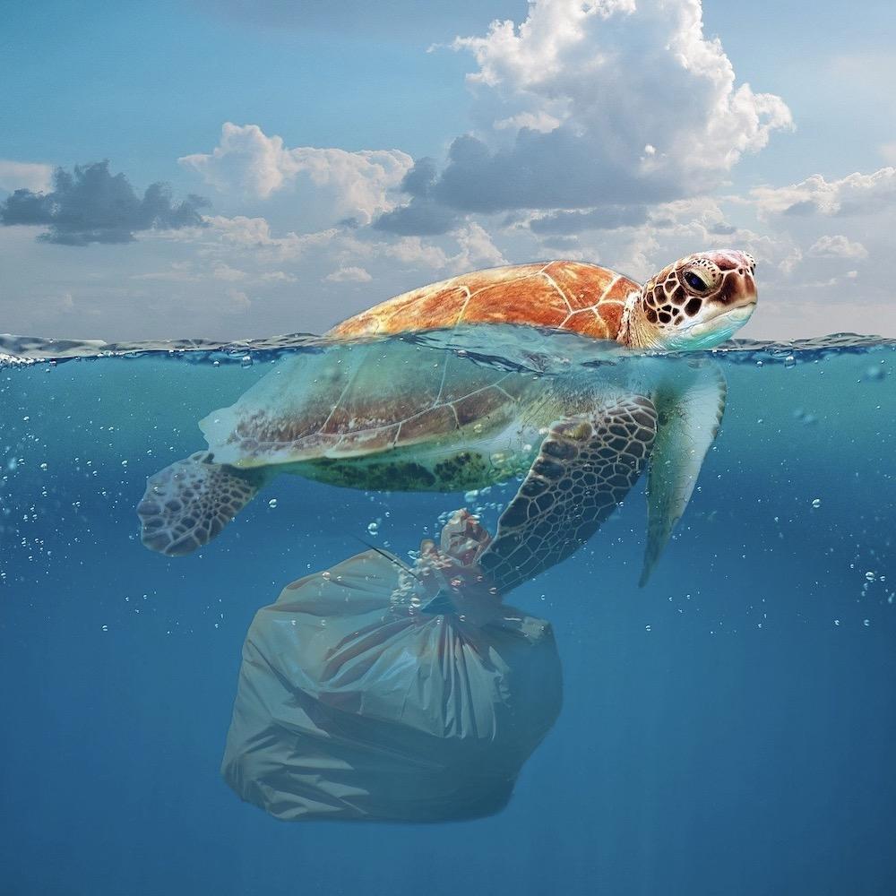 Minder plastic, plastic soup, oceaan,